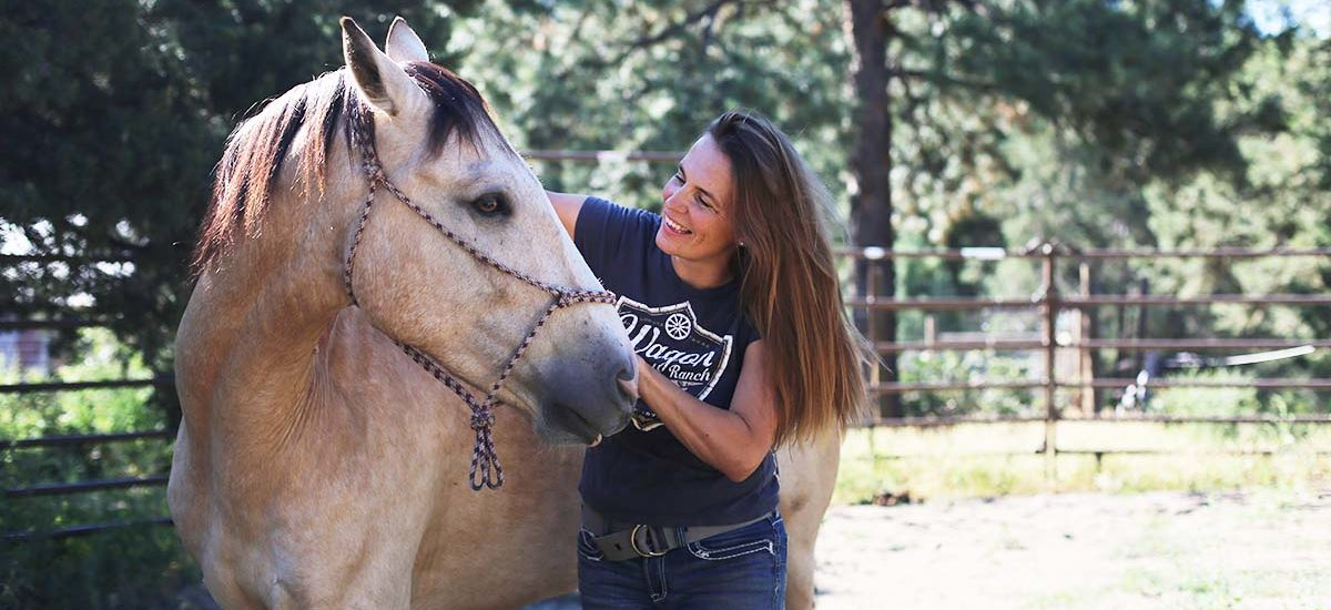 Horse Chiropractic, Animal Chiropractic